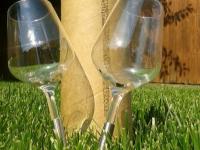 Boire un verre de vin à l'extérieur grâce à « Pointer »  et à  la FAO ESPRIT