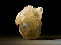 Stratasys présente l'imprimante 3D Digital Anatomy