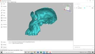 Le scanner 3D aide à reconstituer un crâne vieux de 2 millions d'années